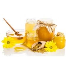 Sušička medu kondenzačná
