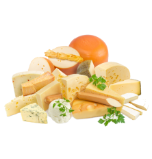Cheese kettle SP Profi