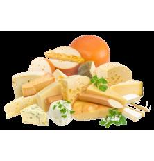 Kotol na výrobu syra SP Profi