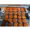 Falafel Continuous Infrared Roaster