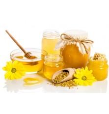 Пастеризатор мёда