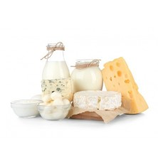 Cheese Vat / Pasteurizer MIP CH