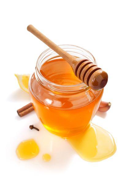 honey pump